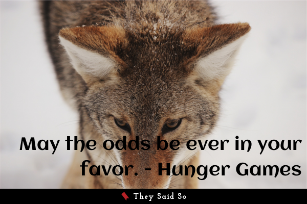 May the odds be ever in your favor. - Hunger Games